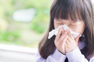 緩和花粉症及過敏所造成的不適